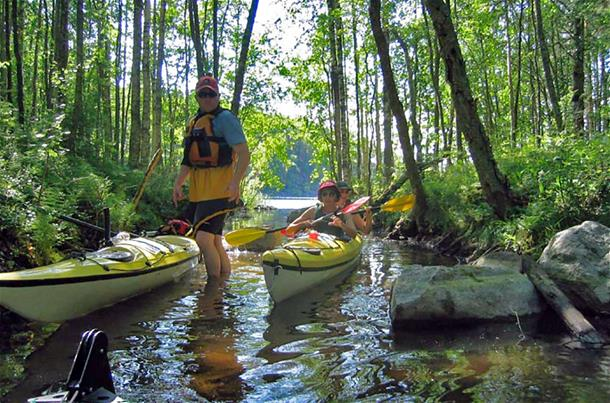 1 Day Kayaking tour in Kolovesi